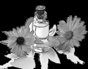 huile de massage biologique